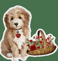 vintage dog chien 🐶