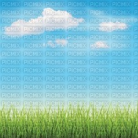 sky bg grass ciel fond herbe