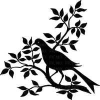 MMarcia silhueta dove pássaro galho