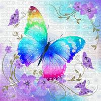 butterfly bg