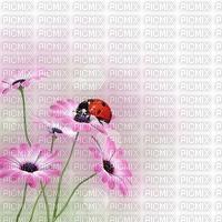 image encre couleur effet texture fleurs coccinelle nature printemps edited by me