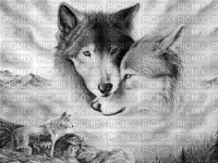 wolf bp