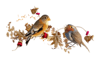 automne feuilles oiseaux deco autumn bird
