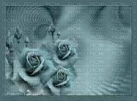 bg---background--flowers--blommor--turkos