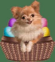 påsk-hund