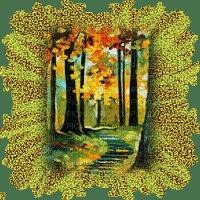 autumn forest paysage automne foret