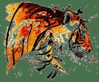 tigre.Cheyenne63
