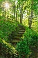 Fond escalier verdure