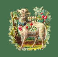 easter lamb  vintage agneau pâques