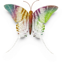 Tournesol94 papillon