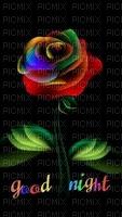Good Night Colorful Rose