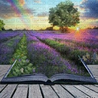paysage lavender field bg