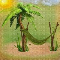 beach plage strand island insel  summer ete paysage landscape fond background palm palme