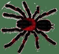 Spider.Black.Red