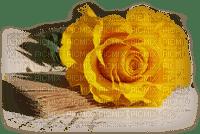 cecily-fleur rose jaune