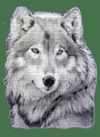 (sylvain) loup