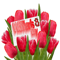 happy womens day tulips
