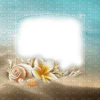beach plage strand sand shell shellfish muschel  meer  sea mer  summer ete paysage landscape fond background coquille tube frame cadre