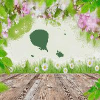 fleur cadre printemps flower frame spring