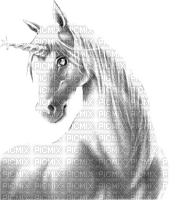 unicorn white licorne blanc