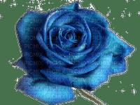 Blue rose.Fleur.Flower.Deco.Victoriabea