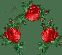 rose rouge fleur cadre rose red frame