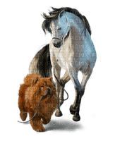 häst-hund-horse-dog
