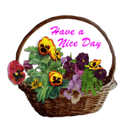 Pansy Green Basket Text  Have A Nice Day - Bogusia