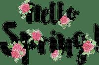 hello spring text