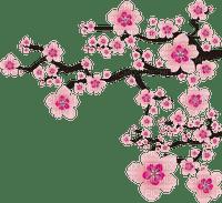 japanese  fleurs branche  flower branch