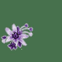 Fiore ( Grafica Guadagnin )