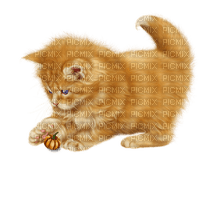 Tournesol94 chat