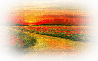 paysage-landscape-scenery-sunset-field poppies Blue DREAM70