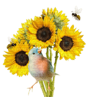 tournesol-canari-abeille- flower-bird-bee