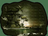 tropical trees bp