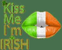 st patrick day kiss me i am irish