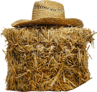 Paille.Straw.Paja.Hat.Chapeau.Farm.barn.Ferme.Victoriabea