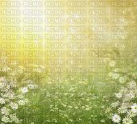 green fond