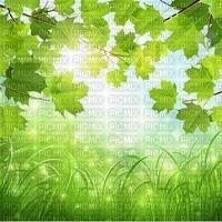 nature bg fond nature