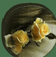 yellow roses jaune