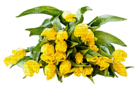 Tulipes.tulips.Bouquet.Deco.Yellow.Fleurs.Victoriabea