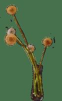 vase de fleur.Cheyenne63