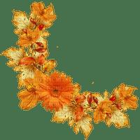 autumn flower border deco automne fleur