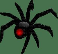 spider, hämähäkki