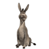 Kaz_Creations Cute Cartoon Cartoons Shrek Donkey