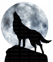 wolf moon loup lune