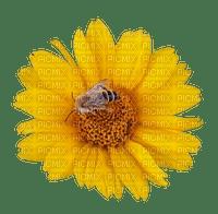 sunflower sonnenblume bee biene abeille tournesol deco tube summer ete flower fleur blume fleurs blossom