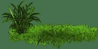 herbe  grass deco