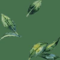 ✶ Leaves {by Merishy} ✶
