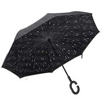 parapluie  noir umbrella black